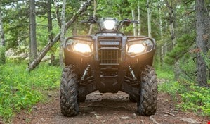 Front view of Rubicon DCT Deluxe in the forest with the headlights on