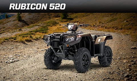 Rubicon 500. Image of rider on black ATV comfortably driving on wooded ATV trail