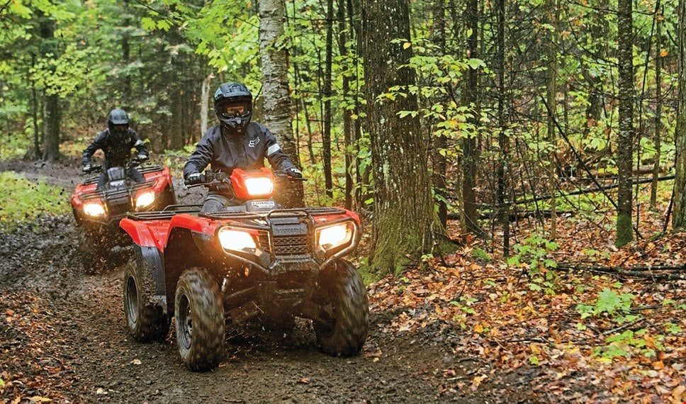 ATVs in the woods