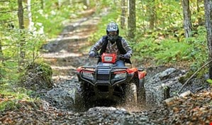 Man driving ATV downhill in woods