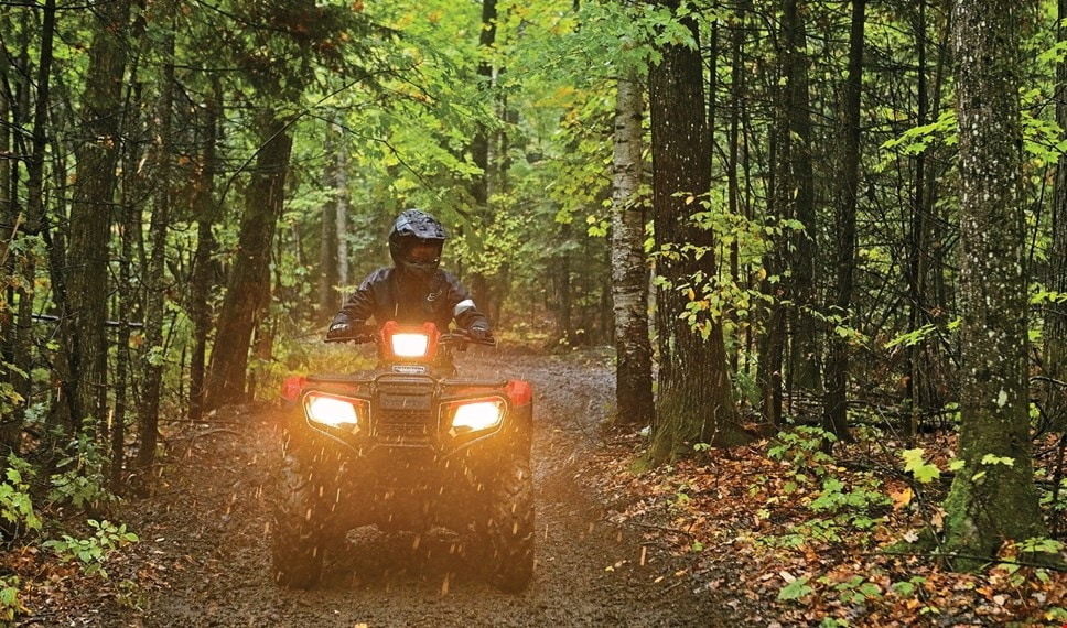 Man with ATV headlights on in woods